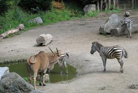 Parkings Zoo de Lille à Lille - Réservez au meilleur prix