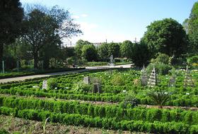 Parkeerplaatsen Tuin van de Arquebuse in Dijon - Boek tegen de beste prijs
