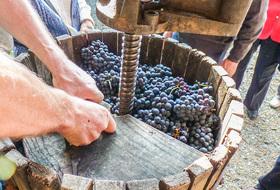 Parkeerplaats Museum van wijnbouw en wijn van Anjou in Angers : tarieven en abonnementen - Parkeren bij museums | Onepark