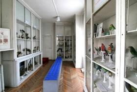 Parkeerplaatsen Museum voor Natuurwetenschappen in Angers - Boek tegen de beste prijs