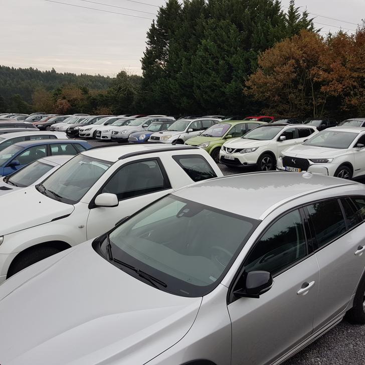 Parking Low Cost EUROPARKING (Exterior) Custóias