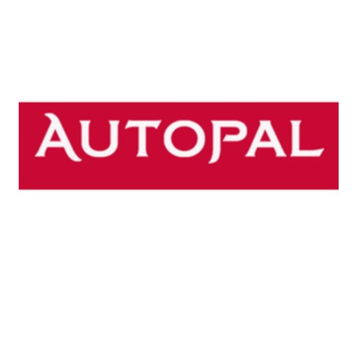 Parking Low Cost AUTOPAL PARKING (Exterior) Sommacampagna (VR)