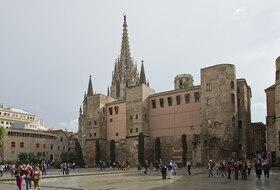 Parkeerplaatsen Plaza Nueva in Barcelona - Boek tegen de beste prijs
