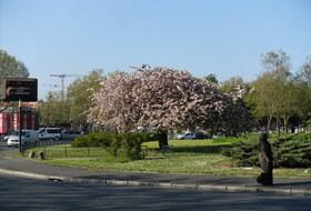 Parking Porte d'Aubervilliers à Paris : tarifs et abonnements - Parking de quartier | Onepark
