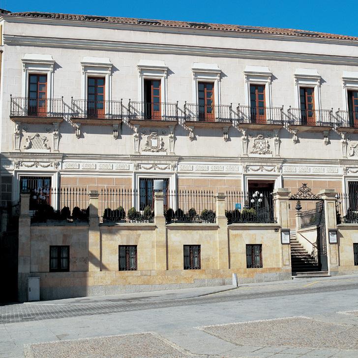Estacionamento Hotel NH COLLECTION PALACIO DE CASTELLANOS (Coberto) Salamanca